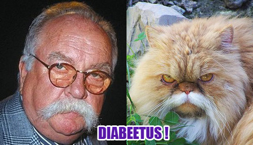 Funny Cat Picture Thread! - Page 2 Wildfred-Brimely-Diabeetus-cat